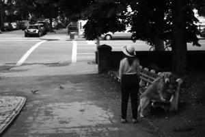 http:  www.taishimizu.com pictures 2009 06 22 walk to work Nikon D200 Nikkor S 50mm f1 4 dog thumb.jpg