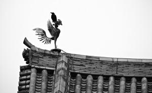 http:  www.taishimizu.com pictures uji byodo in phoenix crow nikon S10 thumb.jpg